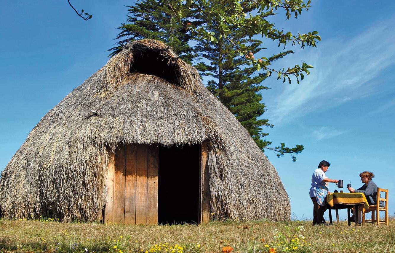 Cultura_Mapuche_Lago_Budi-b